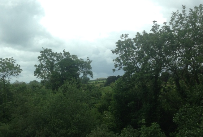 Newgrange view